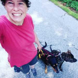 Raleigh dog trainer Amy Griswold