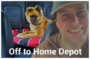 Driving with dog to Lowes