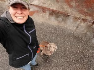 Dog Training Collars - Success with the Prong